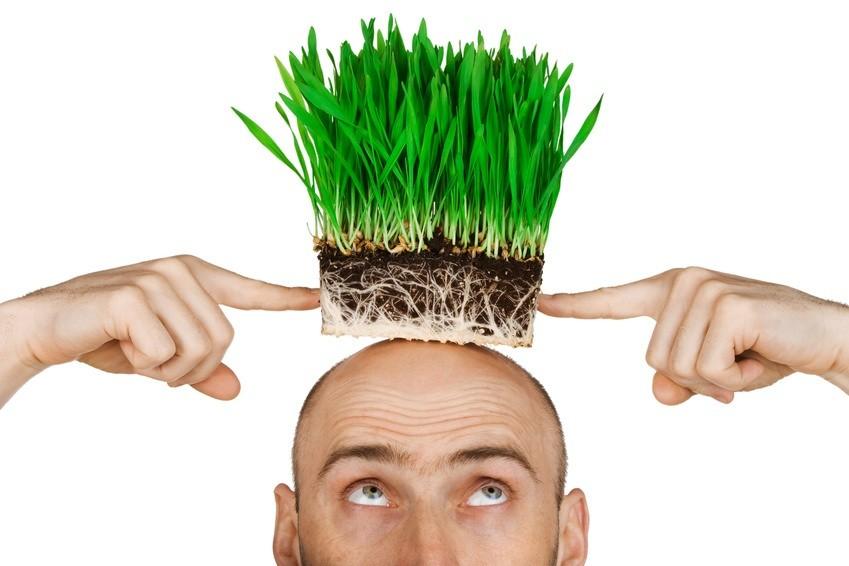 Grass hair