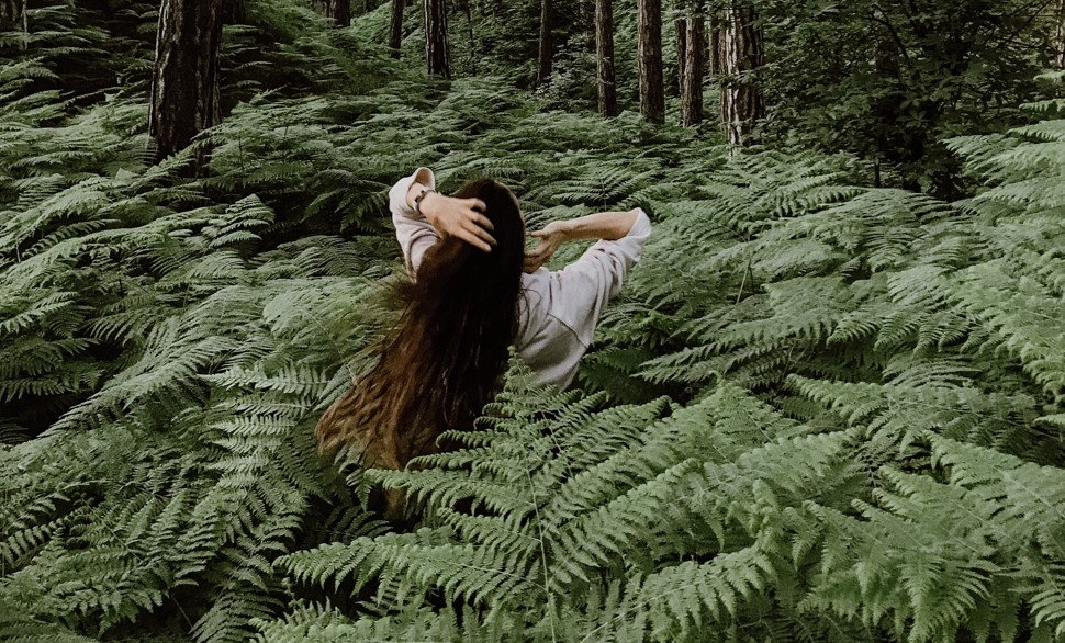 Отвар трав для роста волос
